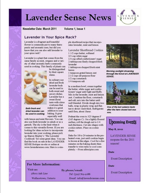 Lavender sense newsletter template jessica wilkie for Weebly templates for photographers